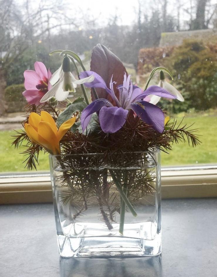 Flowers Feb 16